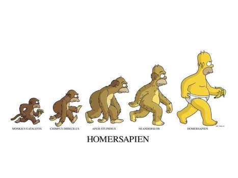 Evolucion-Historia